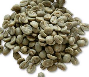 green-coffee-balance duo