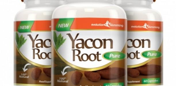 Yacon Root Pure 500 mg