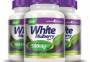 White Mulberry Leaf Extract 500 mg (60 κάψουλες)