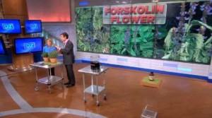 dr.oz-forskolin-lipodialites-greece