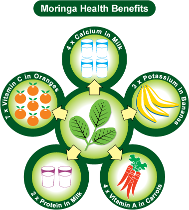 moringa-health-benefits